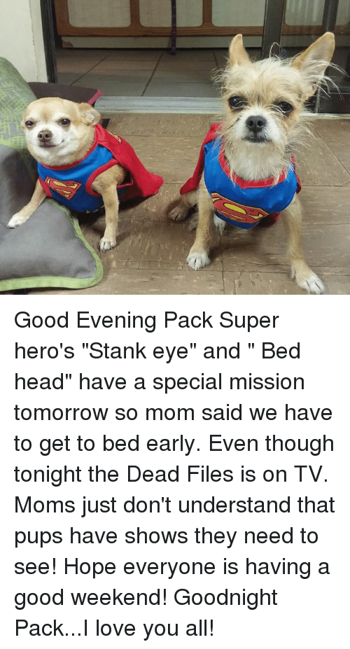 """I Love You, Man: Good Evening Pack  Super hero's """"Stank eye"""" and """" Bed head"""" have a special mission tomorrow so mom said we have to get to bed early. Even though tonight the Dead Files is on TV.  Moms just don't understand that pups have shows they need to see!  Hope everyone is having a good weekend!  Goodnight Pack...I love you all!"""