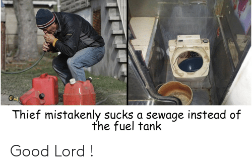25 Best Memes About Good Lord Good Lord Memes