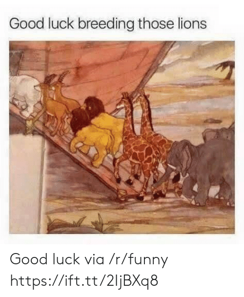 Funny, Good, and Lions: Good luck breeding those lions Good luck via /r/funny https://ift.tt/2IjBXq8