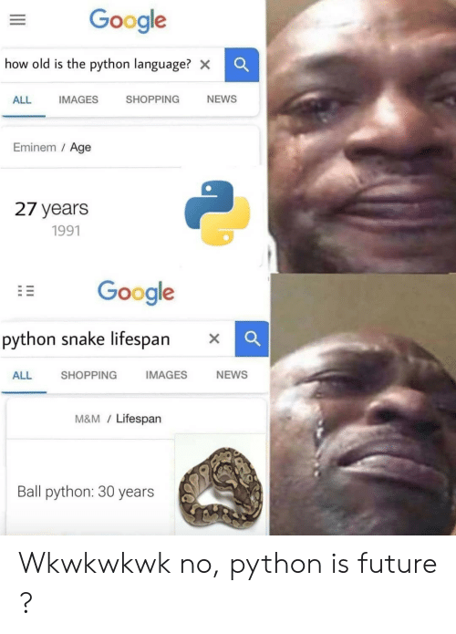 m&m: Google  how old is the python language? x  SHOPPING  NEWS  ALL  IMAGES  Eminem / Age  27 years  1991  Google  python snake lifespan  IMAGES  NEWS  SHOPPING  ALL  M&M/Lifespan  Ball python: 30 years Wkwkwkwk no, python is future ?