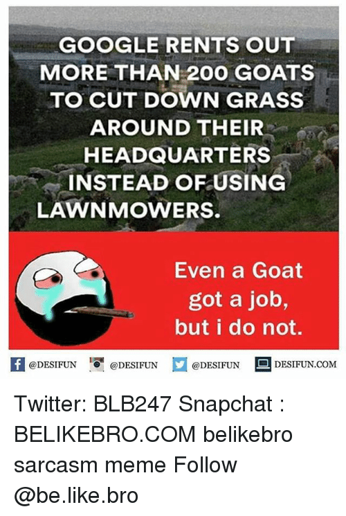 "Bailey Jay, Be Like, and Google: GOOGLE RENTS OUT  MORE THAN 200 GOATS  TO CUT DOWN GRASS  AROUND THEIR  HEADQUARTERS  INSTEAD OFUSING  LAWNMOWERS.  Even a Goat  got a job,  but i do not.  @DESIFUN 0"" @DESIFUN  @DESIFUN DESIFUN.COM  · Twitter: BLB247 Snapchat : BELIKEBRO.COM belikebro sarcasm meme Follow @be.like.bro"