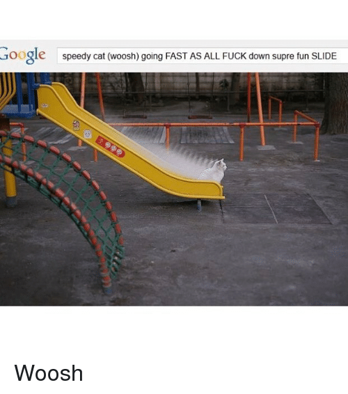 woosh: Google  speedy cat (woosh) going FAST AS ALL FUCK down supre fun SLIDE Woosh