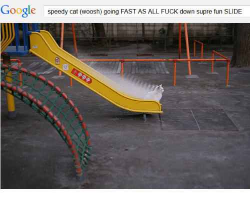woosh: Google  speedy cat (woosh) going FAST AS ALL FUCK down supre fun SLIDE