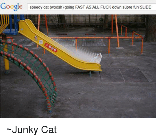 Speedy Cat Woosh