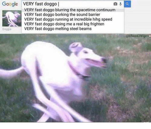 Google, Running, and Doggo: Google VERY fast doggo  VERY fast doggo blurring the spacetime continuum  VERY fast doggo borking the sound barrier  VERY fast doggo running at incredible hihg speed  VERY fast doggo doing me a real big frighten  Doggo  VERY fast doggo melting steel beams  @chaos.reigns