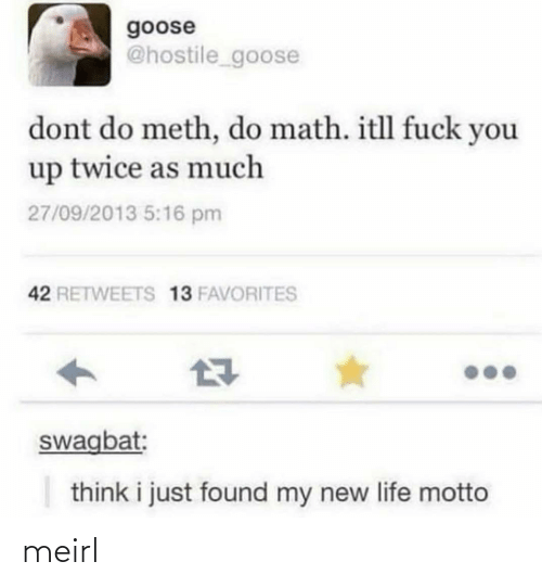 New Life: goose  @hostile_goose  dont do meth, do math. itll fuck you  up twice as much  27/09/2013 5:16 pm  42 RETWEETS 13 FAVORITES  swagbat:  think i just found my new life motto meirl