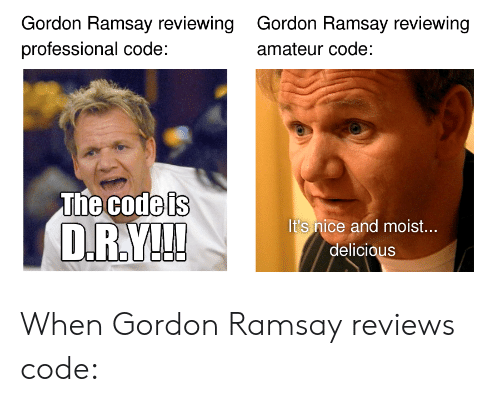 amateur: Gordon Ramsay reviewing  professional code:  Gordon Ramsay reviewing  amateur code:  The Godels  It's nice and moist...  delicious When Gordon Ramsay reviews code: