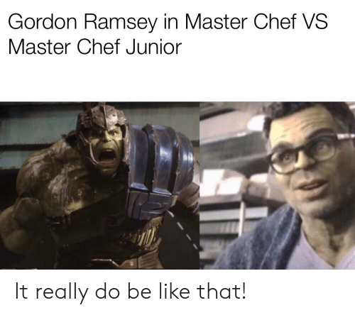 Be Like, Chef, and Master Chef: Gordon Ramsey in Master Chef VS  Master Chef Junior It really do be like that!
