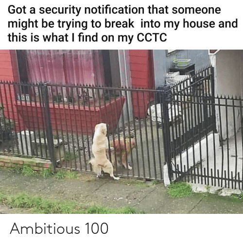 Notification: Got a security notification that someone  might be trying to break into my house and  this is what I find on my CCTC  UOUC R ER Ambitious 100