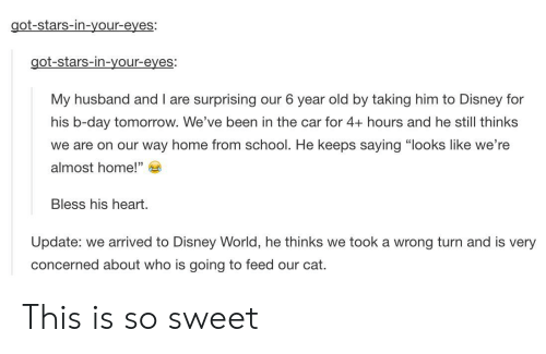 """Bless His Heart: got-stars-in-your-eyes:  got-stars-in-your-eyes:  My husband and I are surprising our 6 year old by taking him to Disney for  his b-day tomorrow. We've been in the car for 4+ hours and he still thinks  we are on our way home from school. He keeps saying """"looks like we're  almost home!""""  Bless his heart.  Update: we arrived to Disney World, he thinks we took a wrong turn and is very  concerned about who is going to feed our cat. This is so sweet"""