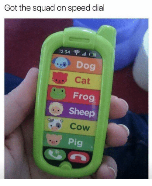 Dial: Got the squad on speed dial  12:34 l  Dog  Cat  Frog  Sheep  Cow  9  Pi