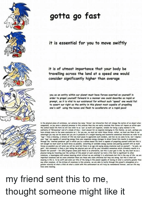 """Bones, Energy, and Fail: gotta go fast  it is essential for you to move swiftly  it is of utmost importance that your body be  travelling across the land at a speed one would  consider significantly higher than average  you as an entity within our planet must have forces exerted on yourself in  order to propel yourself forward in a manner one could describe as rapid or  prompt, as it is vital to our existancel for without such 'speed' one would fail  to assert our right as the entity in this planet most capable of propelling  one's self using the bones and flesh to accellerate at a rapid pacel  in the physioal plane of existance, our universe has many forces (an intersetion that will change the mation of an object when  unopposed), as you serve a physical presence in this universe then one con easily conclude that forces will impose an eetion upern  tht onbon based life form we will now rfer te as """"you' (g miti eell ryoism notable for being spiny-met in tha  subfamily of """"Erinaceine"""" and ofa shade of blue most unusual for an organism belonging to this family) such, parhaps you  have already come to the some conclusion as i. for you see, e must nat resist these forees. rather, we must use them to our  advantogel you may not be oware but you are in posession of a weight-beering and lecometive anatomieal strueture we refer to as  'legs' 1 truly a blessing, a miracle ef lifel one must pause to appreciate such wonders, and how we we eeme te be. but i digress  your .legs- ble e f comerting energy from yur organisms energy storages to direct force! thi results in momentum,  through the 'inverted pendulum geit in which you es carben besed life form is capable of propelling yourelf with! but this is  not enough! we mat exert es much foree es possible, converting eil teieble energy seure"""" pushing yanself with much  forces es possible! you will oche, you will be sore, but there isen oge-eld seying onong erestrg""""uch """" yourself-""""no pain, no  gain. this stotement is likely o jest"""