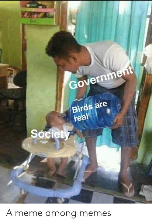 Among: Government  Birds are  real  Society A meme among memes