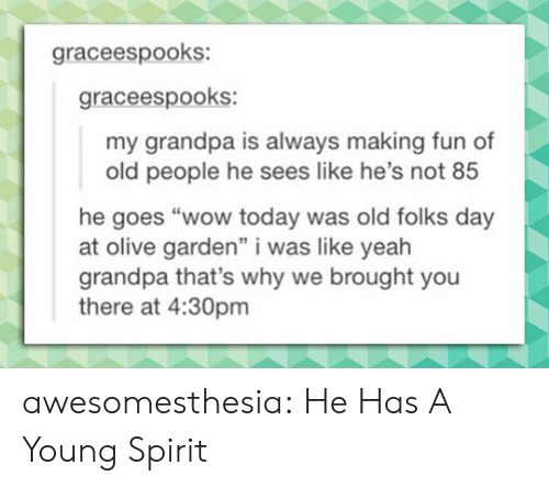 "Old People, Olive Garden, and Tumblr: graceespooks:  graceespooks:  my grandpa is always making fun of  old people he sees like he's not 85  he goes ""wow today was old folks day  at olive garden"" i was like yeah  grandpa that's why we brought you  there at 4:30pm awesomesthesia:  He Has A Young Spirit"