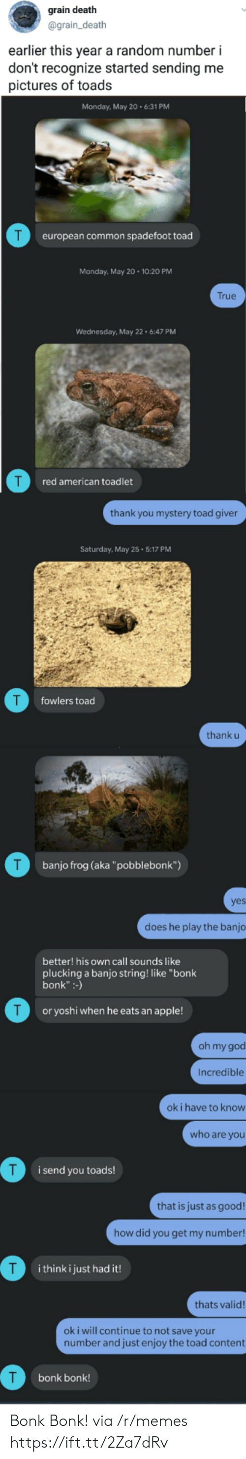"toads: grain death  @grain_death  earlier this year a random number i  don't recognize started sending me  pictures of toads  Monday, May 20.6:31 PM  T  european common spadefoot toad  Monday, May 20 10:20 PM  True  Wednesday, May 22 6:47 PM  red american toadlet  thank you mystery toad giver  Saturday, May 25 5:17 PM  T  fowlers toad  thank u  T  banjo frog (aka""pobblebonk"")  yes  does he play the banjo  better! his own call sounds like  plucking a banjo string! like ""bonk  bonk"":-)  T  or yoshi when he eats an apple!  oh my god  Incredible  ok i have to know  who are you  i send you toads!  that is just as good!  how did you get my number!  T  i think i just had it!  thats valid!  oki will continue to not save your  number and just enjoy the toad content  bonk bonk! Bonk Bonk! via /r/memes https://ift.tt/2Za7dRv"