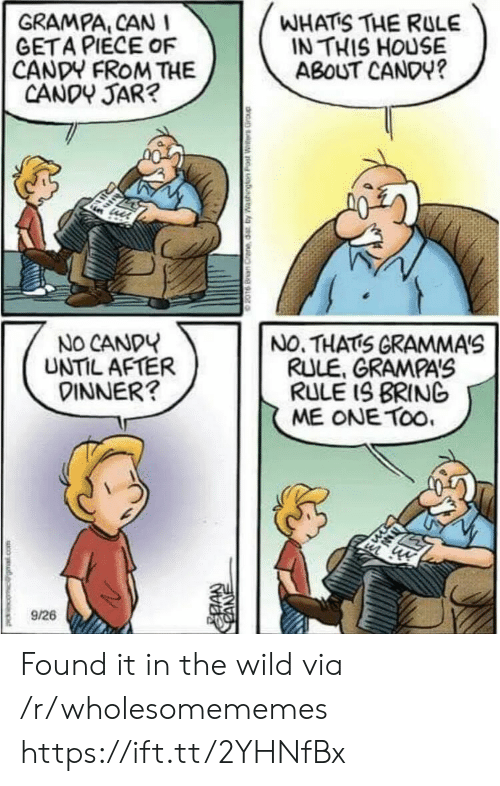 The Wild: GRAMPA, CAN  GETA PIECE OF  CANDY FROM THE  CANDY JAR?  WHATS THE RULE  IN THIS HOUSE  ABOUT CANDY?  NO CANDY  UNTIL AFTER  DINNER?  NO. THATS GRAMMA'S  RULE, GRAMPA'S  RULE IS BRING  ME ONE TOo  9/26  CANE Found it in the wild via /r/wholesomememes https://ift.tt/2YHNfBx
