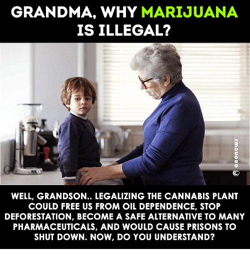 deforestation: GRANDMA, WHY  MARIJUANA  IS ILLEGAL?  WELL, GRANDSON... LEGALIZING THE CANNABIS PLANT  COULD FREE US FROM OIL DEPENDENCE, STOP  DEFORESTATION, BECOME A SAFE ALTERNATIVE TO MANY  PHARMACEUTICALS, AND WOULD CAUSE PRISONS TO  SHUTDOWN. NOW, IDO YOU UNDERSTAND?