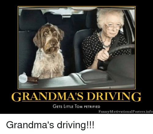 Funny Motivational: GRANDMA'S DRIVING  GETs LITTLE ToM PETRIFIED  Funny Motivational Posters.info Grandma's driving!!!