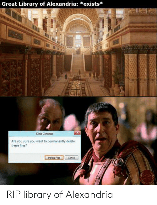 Permanently Delete: Great Library of Alexandria: *exists*  Disk Cleanup  Are you sure you want to permanently delete  these files?  Delete Files  Cancel  SPORT RIP library of Alexandria