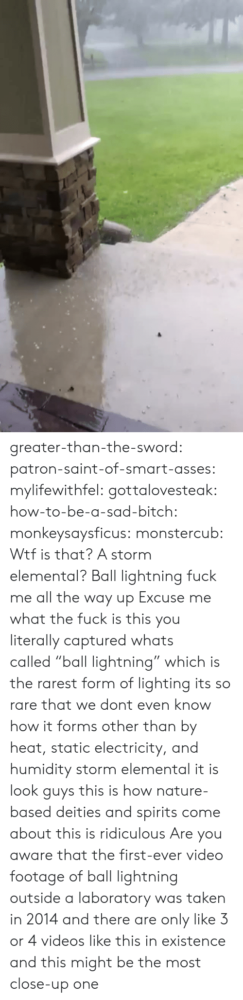 "Wtf Is That: greater-than-the-sword:  patron-saint-of-smart-asses:  mylifewithfel:  gottalovesteak:  how-to-be-a-sad-bitch:  monkeysaysficus:   monstercub: Wtf is that? A storm elemental?  Ball lightning fuck me all the way up   Excuse me what the fuck is this  you literally captured whats called ""ball lightning"" which is the rarest form of lighting its so rare that we dont even know how it forms other than by heat, static electricity, and humidity  storm elemental it is  look guys this is how nature-based deities and spirits come about this is ridiculous  Are you aware that the first-ever video footage of ball lightning outside a laboratory was taken in 2014 and there are only like 3 or 4 videos like this in existence and this might be the most close-up one"