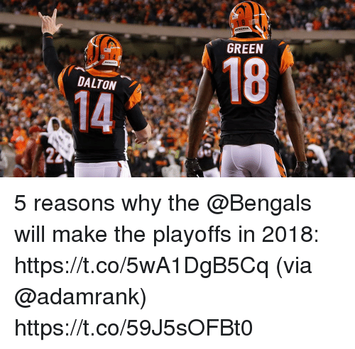 Memes, Bengals, and 🤖: GREEN  18  DALTON  14 5 reasons why the @Bengals will make the playoffs in 2018: https://t.co/5wA1DgB5Cq (via @adamrank) https://t.co/59J5sOFBt0