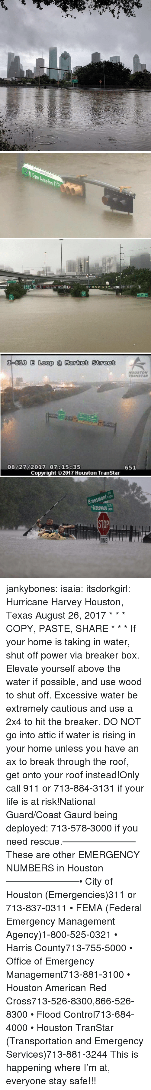 fema: Greenspoint District   Theater District   620 E Loop Market Street  HOUSTON  TRANSTAR  08/27/2017 07:15:35  651  Copyright ⓒ 2017 Houston TranStar   Braesmont 9700  Braeswod  STOP  ONE jankybones: isaia:  itsdorkgirl:  Hurricane Harvey Houston, Texas  August 26, 2017  * * * COPY, PASTE, SHARE * * * If your home is taking in water, shut off power via breaker box. Elevate yourself above the water if possible, and use wood to shut off. Excessive water be extremely cautious and use a 2x4 to hit the breaker. DO NOT go into attic if water is rising in your home unless you have an ax to break through the roof, get onto your roof instead!Only call 911 or 713-884-3131 if your life is at risk!National Guard/Coast Gaurd being deployed: 713-578-3000 if you need rescue.———————–These are other EMERGENCY NUMBERS in Houston———————–• City of Houston (Emergencies)311 or 713-837-0311 • FEMA (Federal Emergency Management Agency)1-800-525-0321 • Harris County713-755-5000 • Office of Emergency Management713-881-3100 • Houston American Red Cross713-526-8300,866-526-8300 • Flood Control713-684-4000 • Houston TranStar (Transportation and Emergency Services)713-881-3244   This is happening where I'm at, everyone stay safe!!!