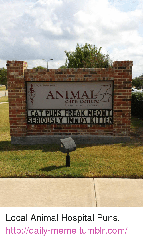"dvm: Greg R. Bobo, DVM  ANIMAL  care centre  Hospital & Boarding <p>Local Animal Hospital Puns.<br/><a href=""http://daily-meme.tumblr.com""><span style=""color: #0000cd;""><a href=""http://daily-meme.tumblr.com/"">http://daily-meme.tumblr.com/</a></span></a></p>"