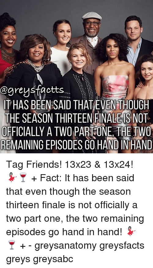 hand in hand: @greys factts  ITHAS BEEN SAID THAT EVENTHOUGH  THE SEASON THIRTEEN FINALE S NOT  OFFICIALLY A TWO PART ONE THE TWO  REMAINING EPISODES GOHAND INHAND Tag Friends! 13x23 & 13x24! 💃🏻🍷 + Fact: It has been said that even though the season thirteen finale is not officially a two part one, the two remaining episodes go hand in hand! 💃🏻🍷 + - greysanatomy greysfacts greys greysabc