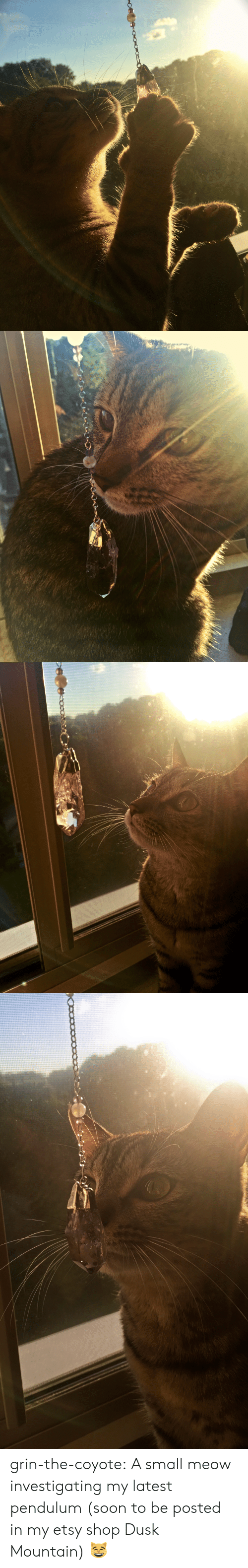pendulum: grin-the-coyote: A small meow investigating my latest pendulum (soon to be posted in my etsy shop Dusk Mountain) 😸