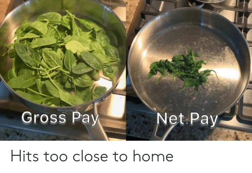 Closeness: Gross Pay  Net Pay Hits too close to home