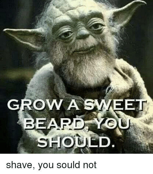 Sould: GROW A  BEARD Yeo  SHOL shave, you sould not