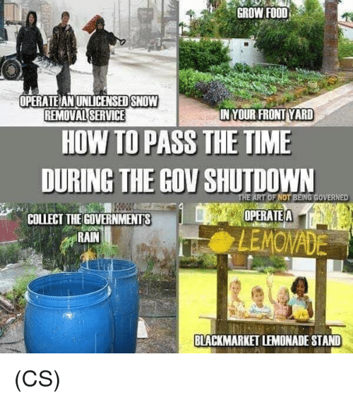 Food, Memes, and How To: GROW FOOD  OPERATE AN UNLICENSED SNOW  REMOVAL SERVICE  IN YOUR FRONT YARD  HOW TO PASS THE TIME  DURING THE GOV SHUTDOWN  ART OF NOT BEING GOVERNED  OPERATEA  COLLECT THEGOVERNMENTS  RAIN  MOWADE  BLACKMARKET LEMONADE STAND (CS)