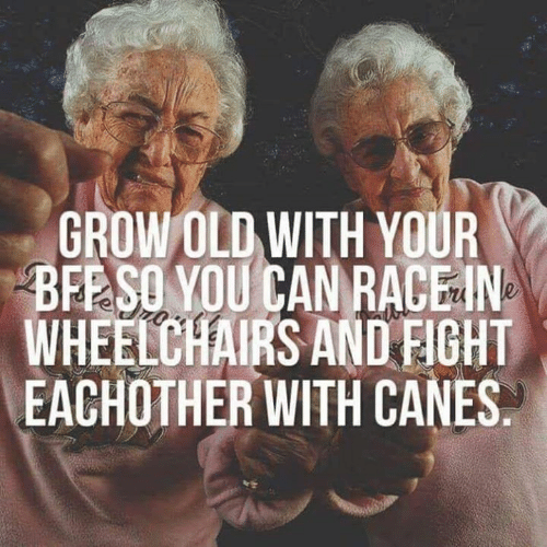 Funny, Old, and Race: GROW OLD WITH YOUR  BEE SO YOU CAN RACE IN  WHEELCHAIRS AND FIGHT  EACHOTHER WITH CANES.