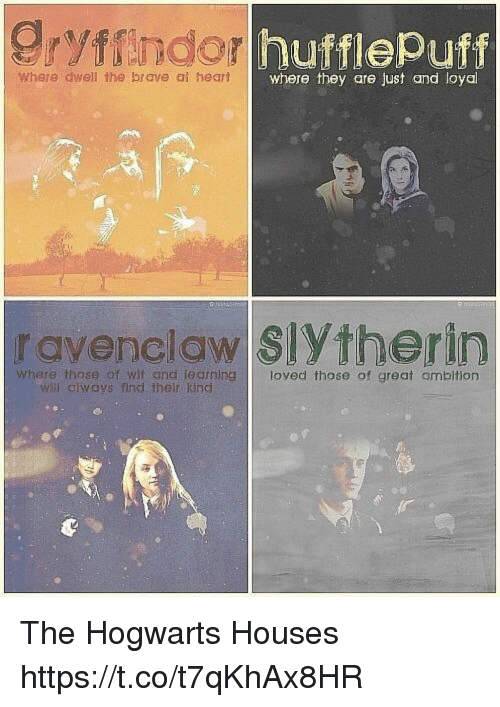 Gryffindor Memes And Slytherin Hufflepuff Where Dwell The Brave Al Heart