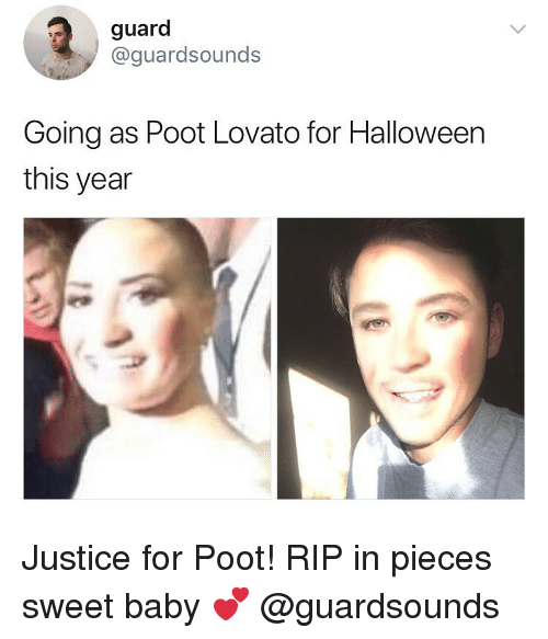 Dank, Halloween, and Poot Lovato: guard  @guardsounds  Going as Poot Lovato for Halloween  this year Justice for Poot! RIP in pieces sweet baby 💕 @guardsounds