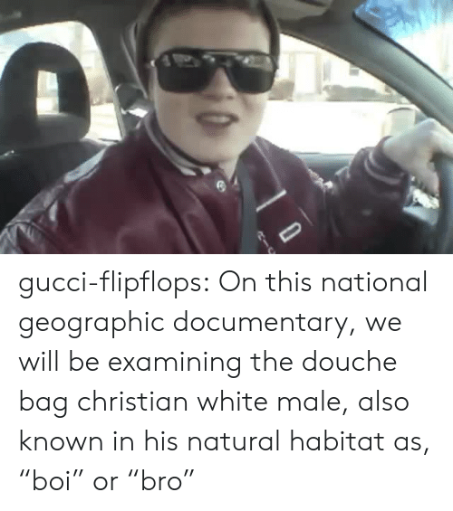 "Gucci, Tumblr, and Blog: gucci-flipflops:  On this national geographic documentary, we will be examining the douche bag christian white male, also known in his natural habitat as, ""boi"" or ""bro"""