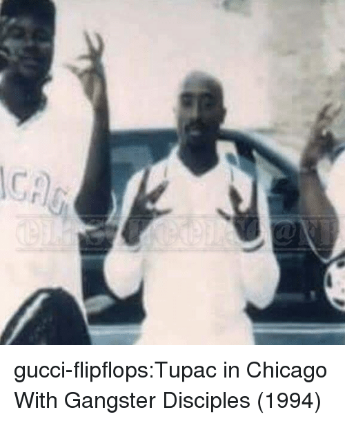 Chicago, Gucci, and Tumblr: gucci-flipflops:Tupac in Chicago With Gangster Disciples (1994)