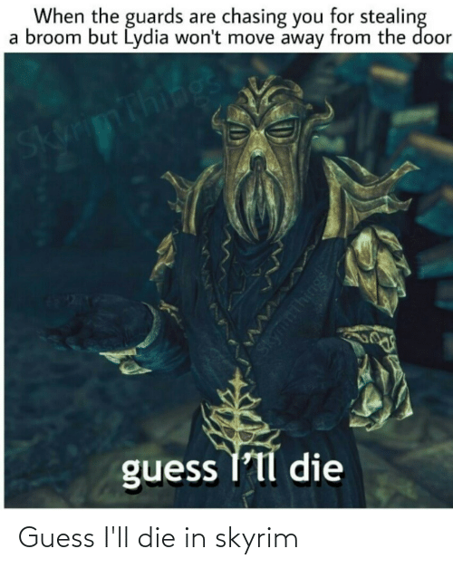 Guess Ill: Guess I'll die in skyrim