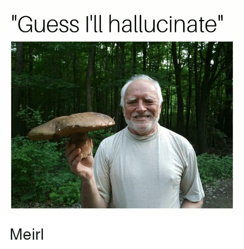 """Guess, MeIRL, and Hallucinate: """"Guess I'll hallucinate"""" Meirl"""