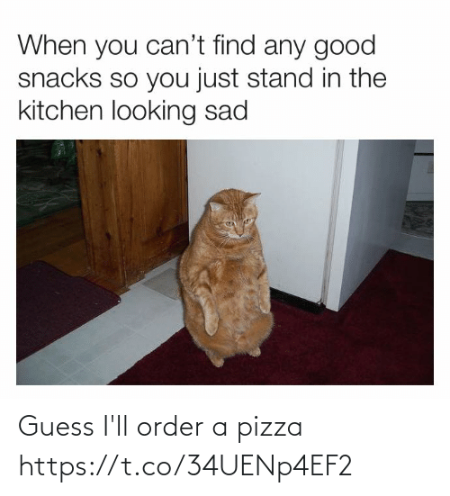 Guess Ill: Guess I'll order a pizza https://t.co/34UENp4EF2