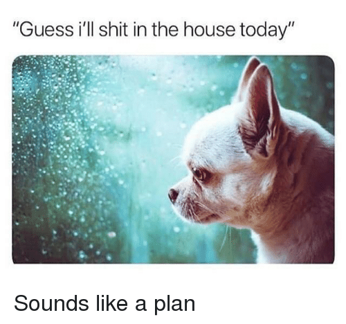 "Guess Ill: ""Guess i'll shit in the house today"" Sounds like a plan"