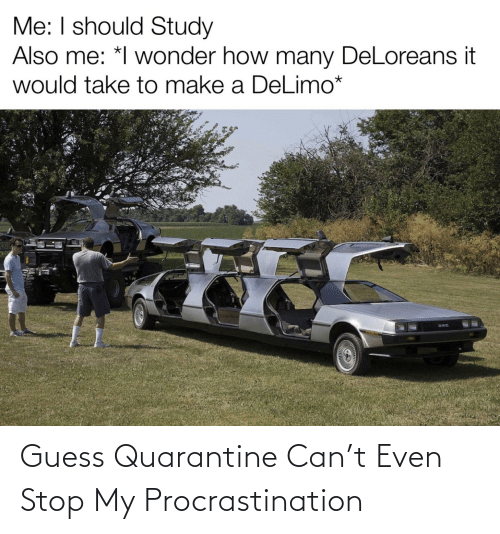 Procrastination: Guess Quarantine Can't Even Stop My Procrastination