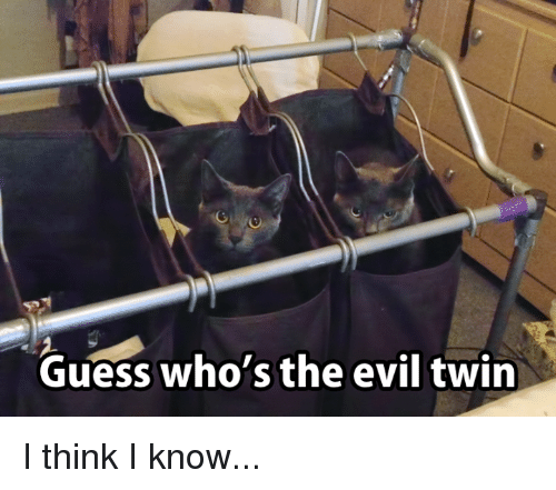 Evil Twin: Guess who's the evil twin I think I know...