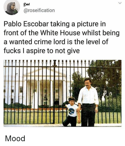 Crime, Dank, and Mood: gui  @roseification  Pablo Escobar taking a picture in  front of the White House whilst being  a wanted crime lord is the level of  fucks I aspire to not give Mood