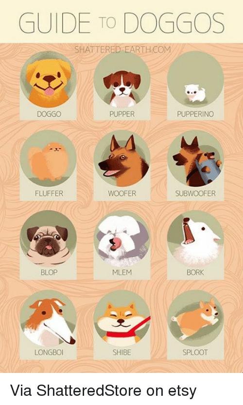 Borking: GUIDE TO DOGGOS  SHATTERED-EARTHCOM  DOGGO  PUPPER  PUPPERINGO  FLUFFER  WOOFER  SUBWOOFER  BLOP  MLEM  BORK  LONGBO  SHIBE  SPLOOT Via ShatteredStore on etsy