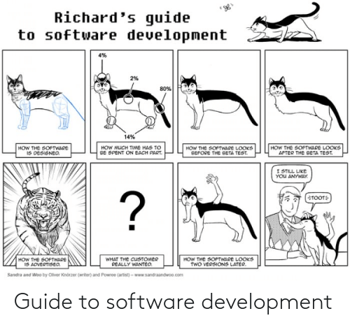 software development: Guide to software development