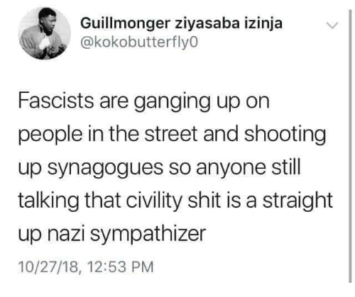 Civility: Guillmonger ziyasaba izinja  @kokobutterfly0  Fascists are ganging up on  people in the street and shooting  up synagogues so anyone stil  talking that civility shit is a straight  up nazi sympathizer  10/27/18, 12:53 PM