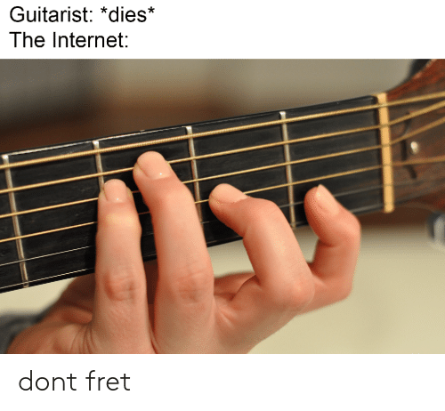 Internet, The Internet, and Don: Guitarist: *dies*  The Internet: dont fret