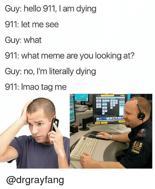 What Meme: Guy: hello 911, I am dying  911: let me see  Guy: what  911: what meme are you looking at?  Guy: no, I'm literally dying  911: Imao tag me @drgrayfang