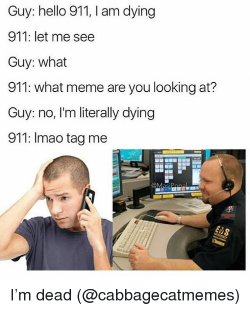 What Meme: Guy: hello 911, I am dying  911: let me see  Guy: what  911: what meme are you looking at?  Guy: no, I'm literally dying  911: Imao tag me I'm dead (@cabbagecatmemes)